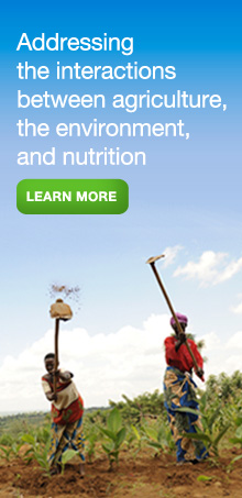 Addressing the interactions between agriculture, the environment, and nutrition